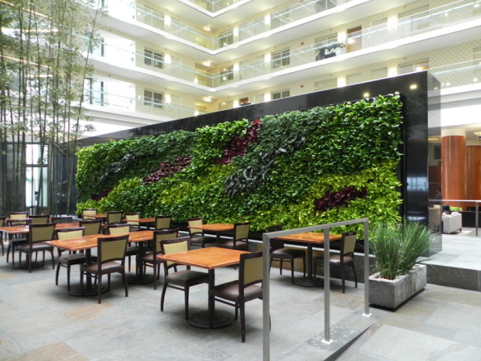 A Stunning Interior Living Wall Installation By GSky Plant Systems Inc.