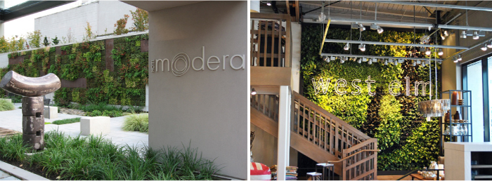 GSky living walls as featured on the Hatch Blog - LOCALLY MANUFACTURED MATERIALS: GREEN ROOFS, LIVING WALLS & FRAMES